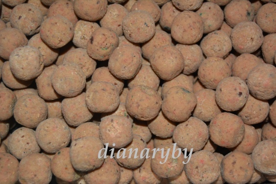 Boilies Silver edition 20mm